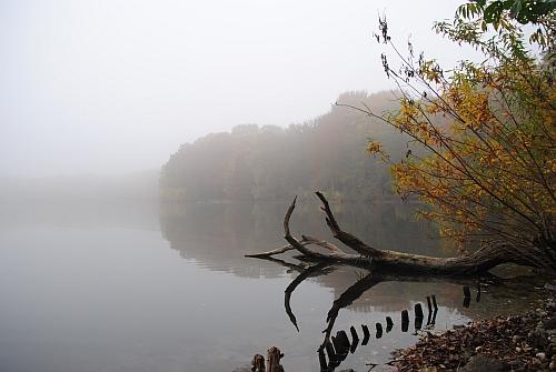 Nebel an der Sechs-Seenplatte in Duisburg